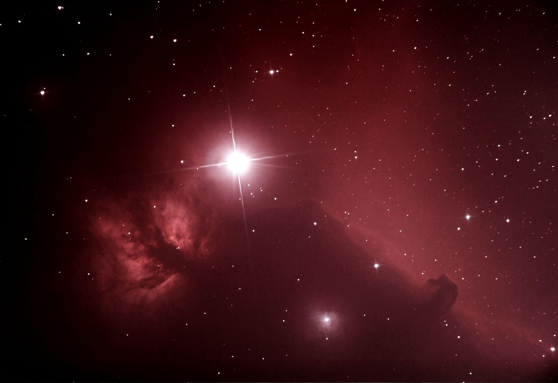 Horsehead/Flame Nebula 11-29-13