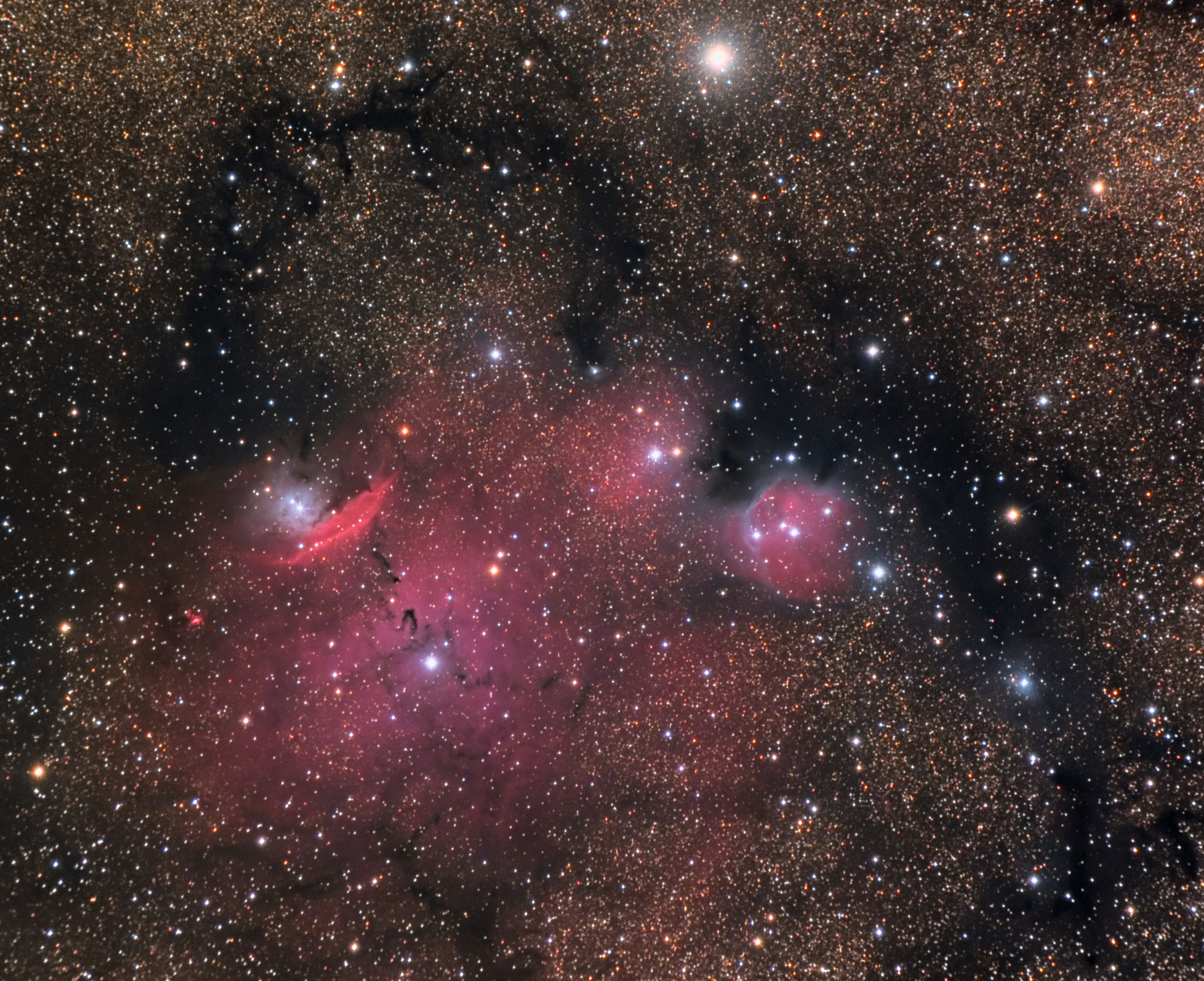 NGC 6559 and Surrounding Nebula in Sagittarius
