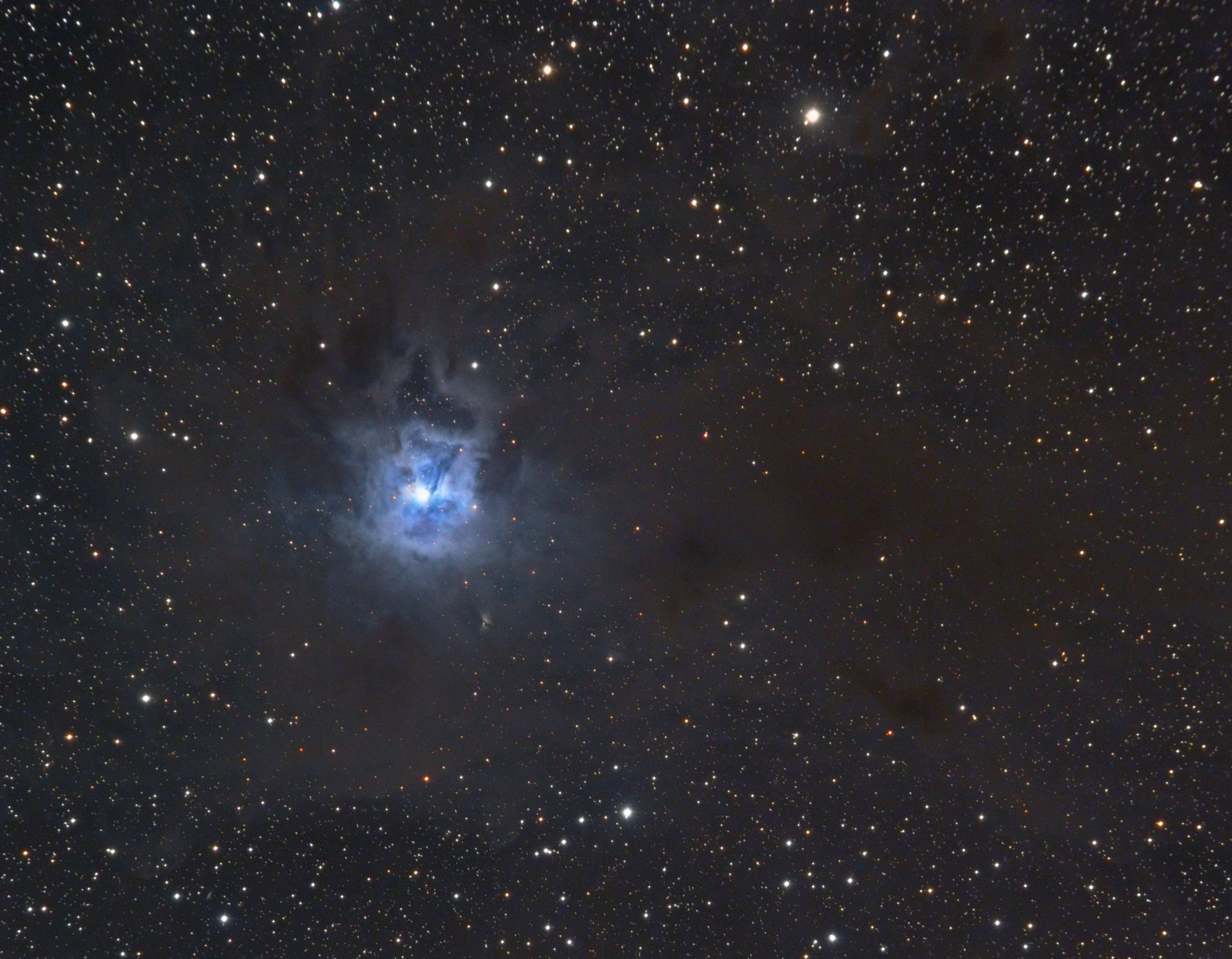 NGC 7023 - The Iris Nebula