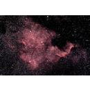 NGC7000 North America Nebula at US Store