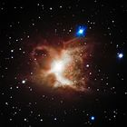 'Very Large Telescope' Drinks In The Toby Jug Nebula
