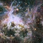 Hubble Captures Tarantula in Deep Space