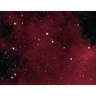 Emission nebulosity in Cygnus