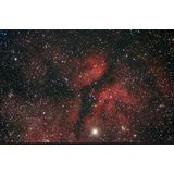 IC 1318 - Sadr Region
