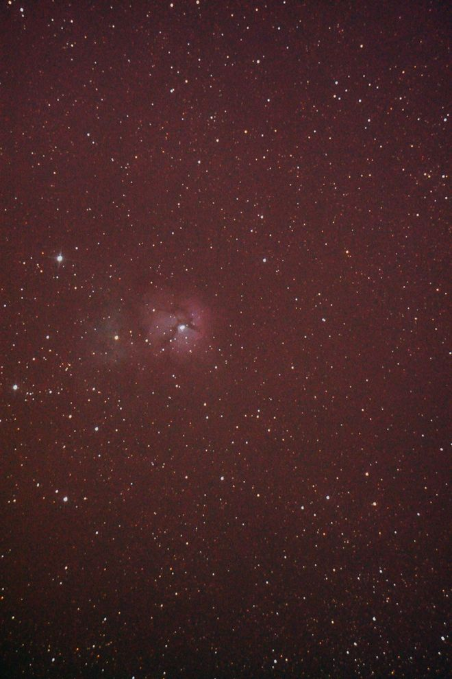 Trifid at Orion Store