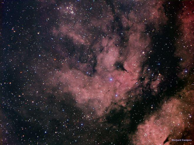 IC 1318 d - Emission Nebula