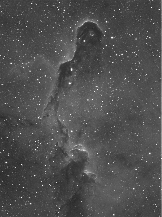 IC 1396 - Elephant's Trunk Nebula