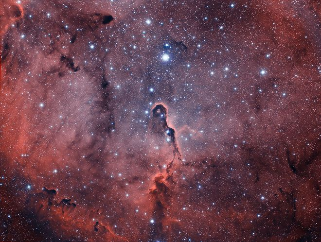 Elephant Trunk Nebula in IC1396